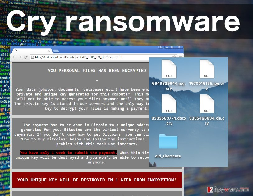 An image of the Cry ransomware virus