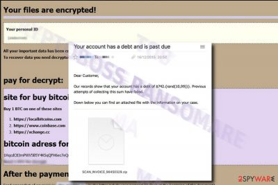The picture illustrating CryptoBoss