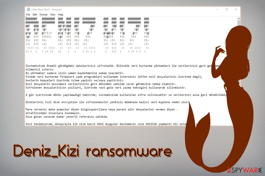 Deniz_Kizi ransomware