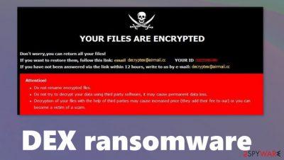 Dex ransomware