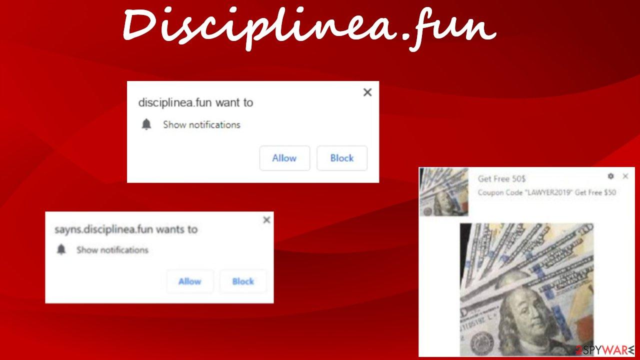 Disciplinea.fun ads