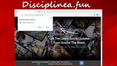 Disciplinea.fun pop-up