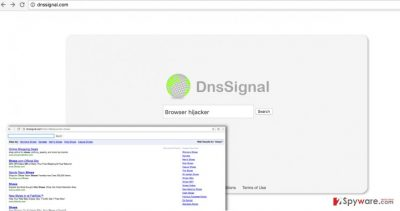 An image showing Dnssignal.com browser hijacker and search results