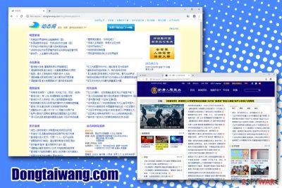 Dongtaiwang.com