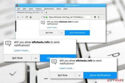 Efishedo.info adware