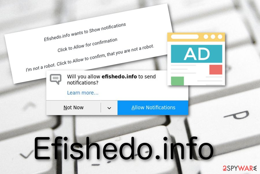 Efishedo.info potentially unwanted app