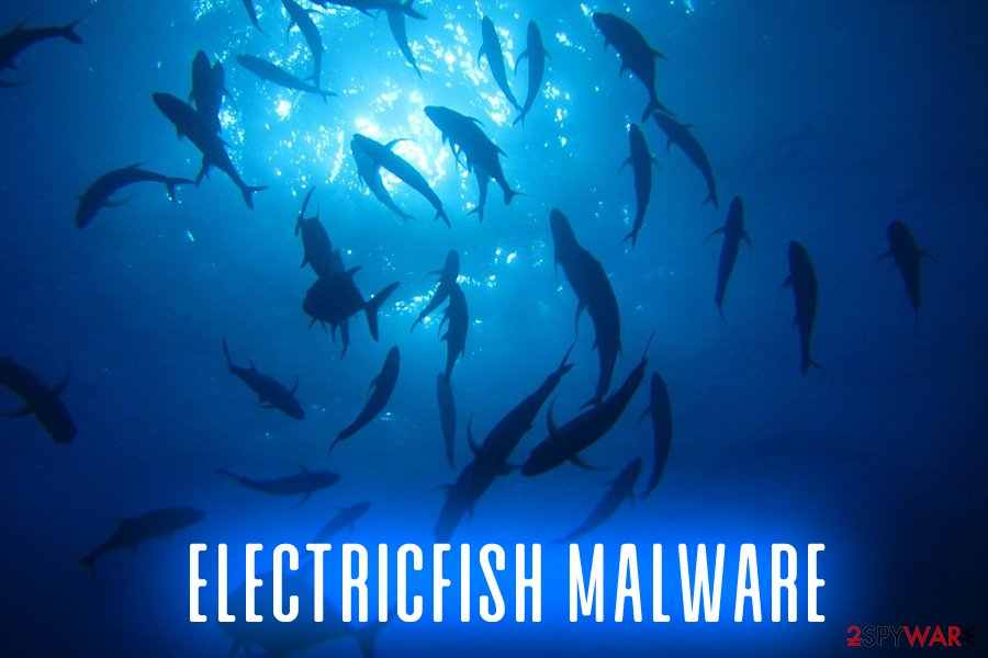 Electricfish malware