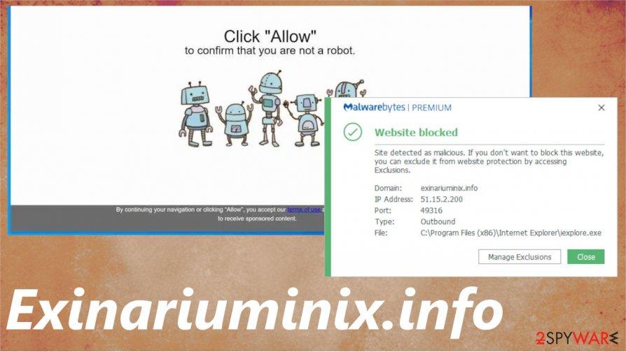Exinariuminix.info