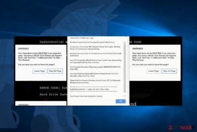 Screenshot of Exploit.swf.bd tech support scam site