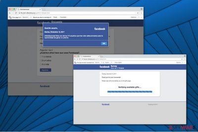 Fb.com-directory.co survey scam image