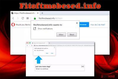 Fitoftmobesed.info