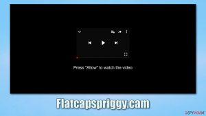 Flatcapspriggy.cam ads