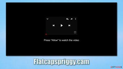 Flatcapspriggy.cam