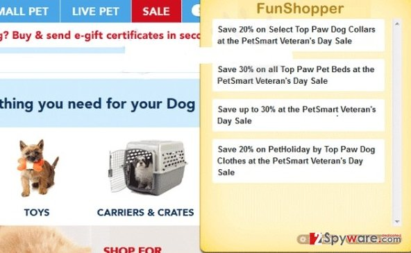Fun Shopper ads snapshot