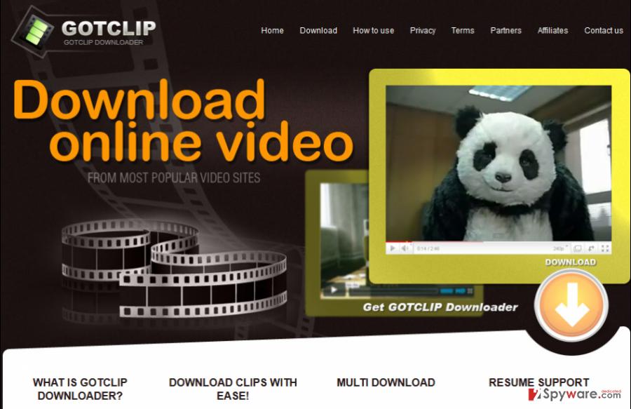 GotClip ads snapshot