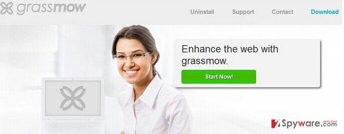 Grassmow ads snapshot
