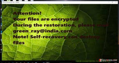 The screenshot of green_ray@india.com.xtbl
