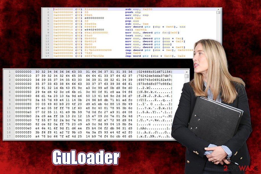 GuLoader virus