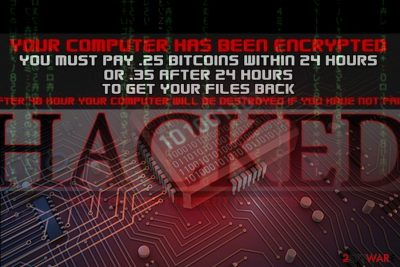 Image of the Hacked virus