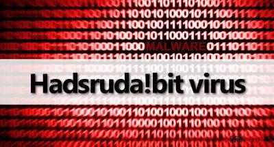 Hadsruda!bit malware