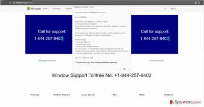 Helpline-9.xyz works like a tech supoort scam
