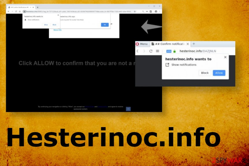 Hesterinoc.info
