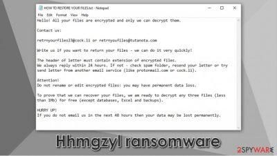 Hhmgzyl ransomware