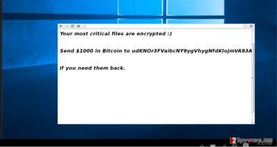 The screenshot of IFN643 virus