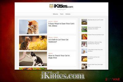 iKitties.com