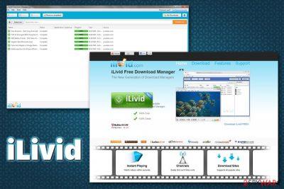iLivid