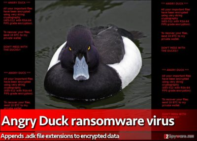 Ransom note created by Angry Duck virus