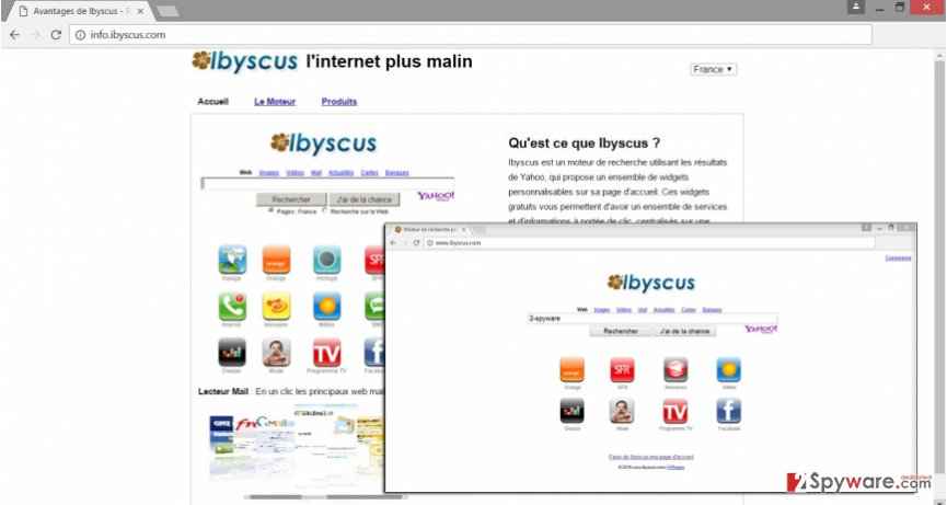 The example of Info.ibyscus.com virus