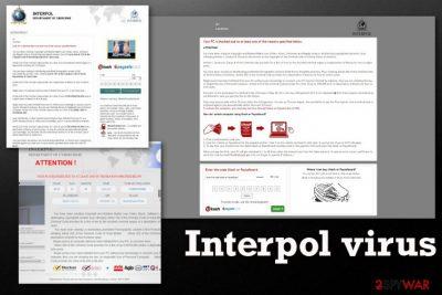 Interpol virus
