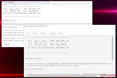 JungleSec ransomware