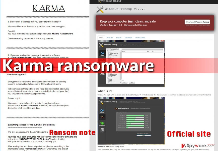 Karma virus pretends to be a PC optimizer