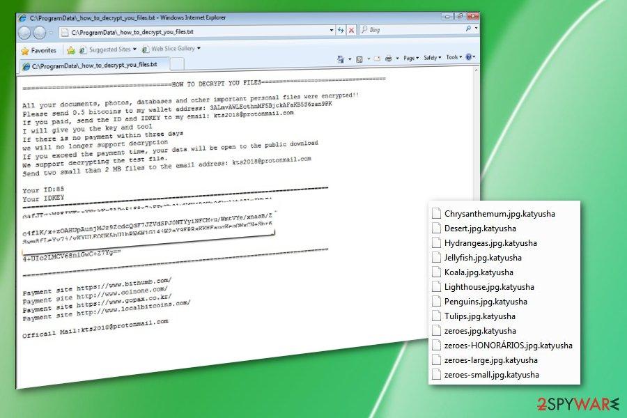Katyusha ransomware virus