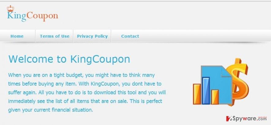 KingCoupon virus snapshot