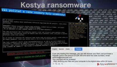 Image of the Kostya ransomware virus