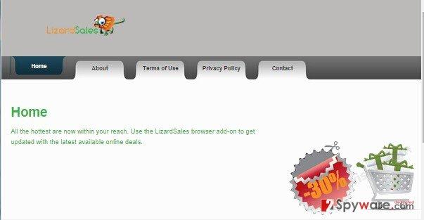 LizardSales ads snapshot