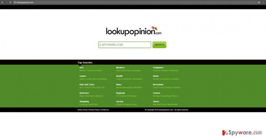 The image revealing Lookupopinion.com