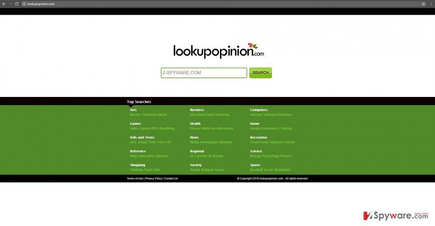 The image revealing Lookupopinion.com