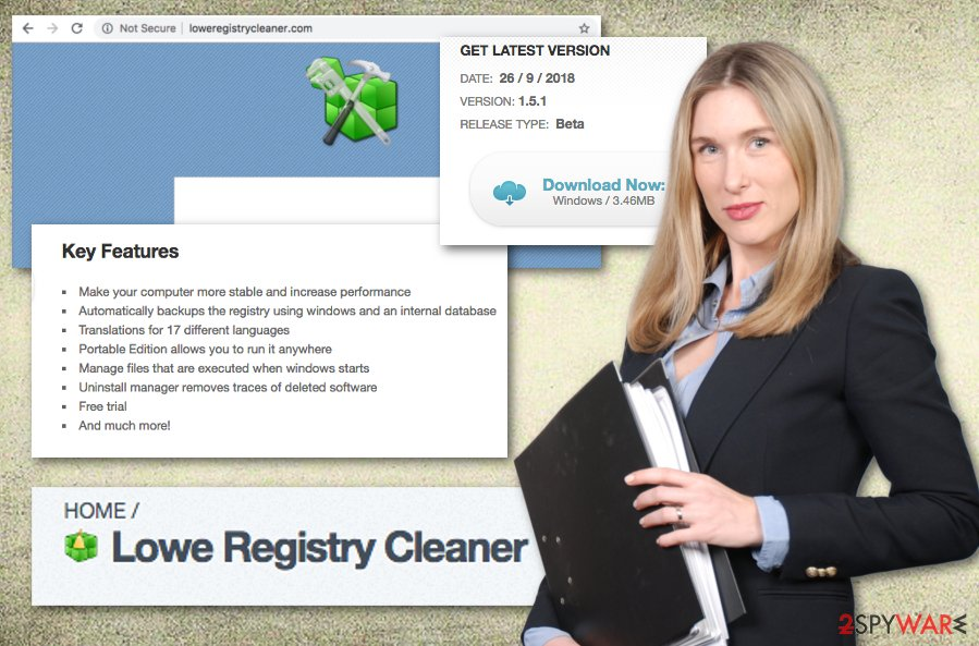 Lowe Registry Cleaner PUP
