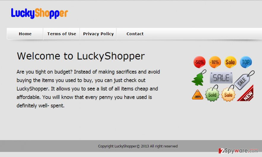 LuckyShopper virus snapshot