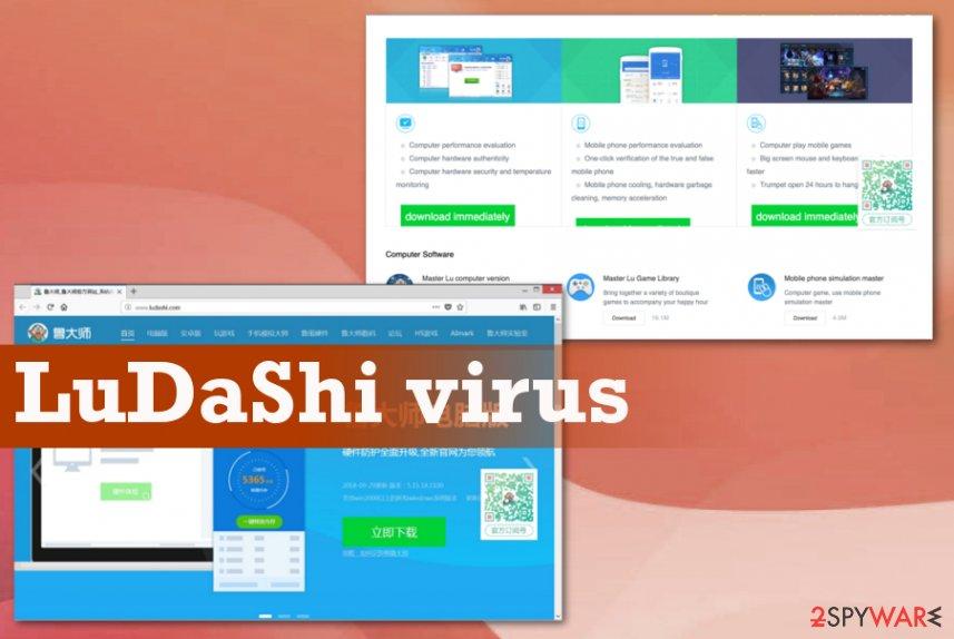 Ludashi virus