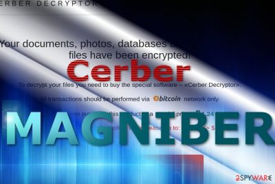 The image reflecting Magniber payment site