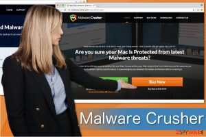 Malware Crusher