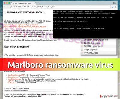 Screenshot of Marlboro virus