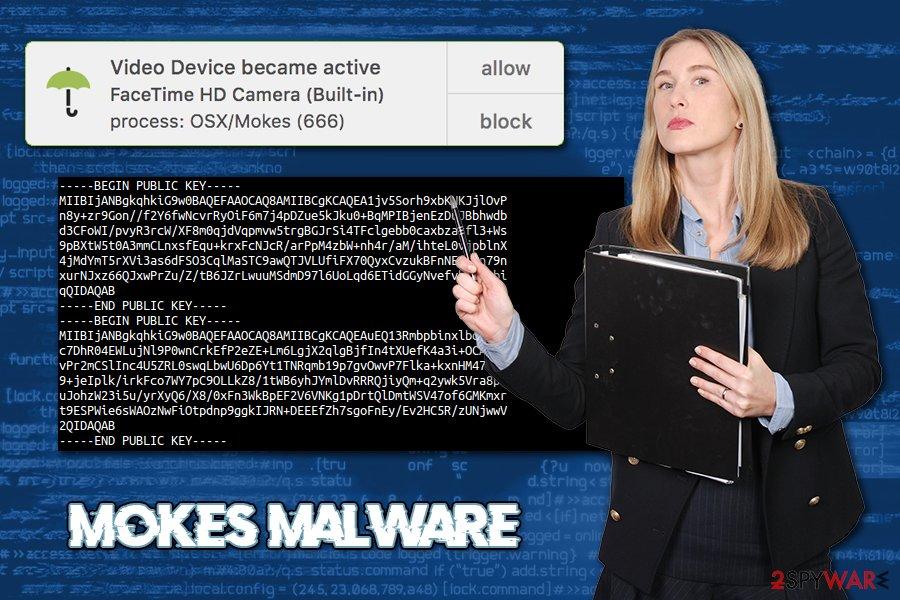 Mokes virus