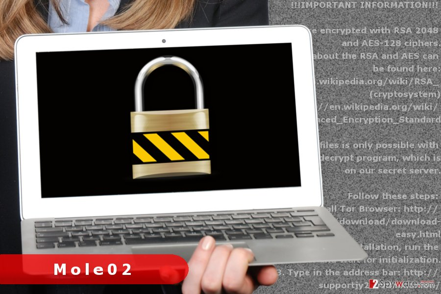The picture of Mole02 ransomware virus