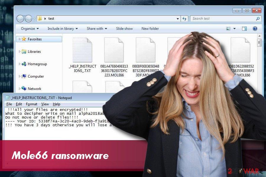 Mole66 CryptoMix ransomware example